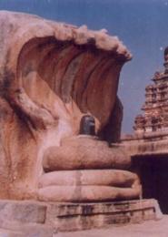 El Saptaphani Nagendra