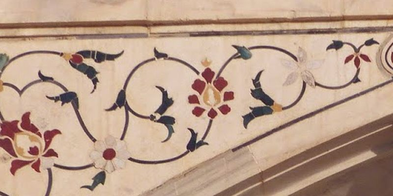 Brick and butter vine, clock vine, dolls shoes, mysore clock vine
