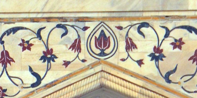 Indian lotus, lotus, sacred lotus