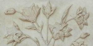 Dzokou lily